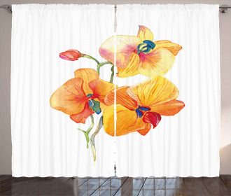Orchid Petal Wild Exotic Curtain