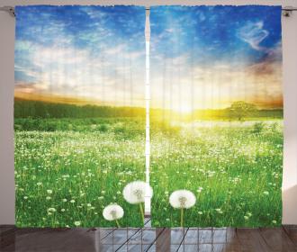 Dandelion Flower Field Curtain