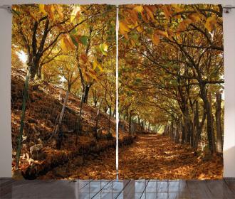 Autumn Foliage Forest Curtain