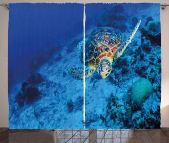 Oceanic Wildlife Curtain
