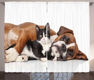 Cute Cat Dog Friendship Curtain