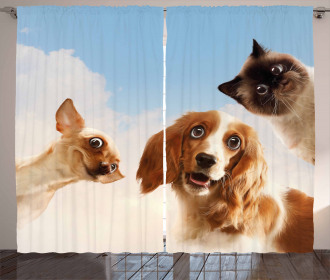 Cats Dogs in Sky Clouds Curtain