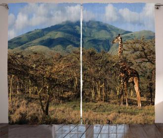 Giraffe Trees Africa Safari Curtain