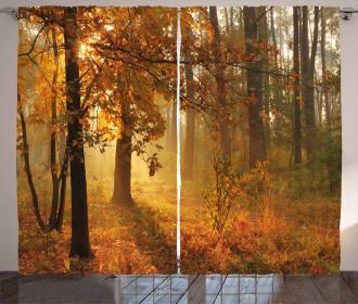 Misty Autumnal Forest Curtain