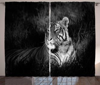 Bengal Tiger Curtain