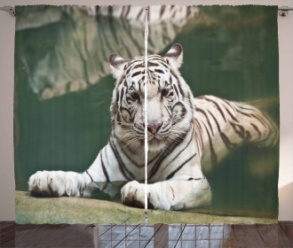 White Tiger Swimming Fun Curtain