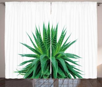 Vibrant Aloe Vera Curtain