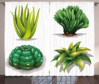 Aloe Vera Plants Cacti Curtain