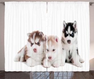 Puppy Friends Curtain