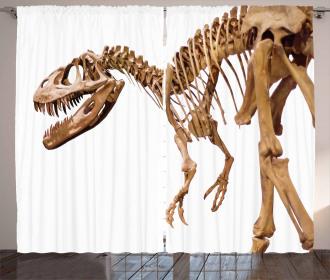 Archeology Theme T-Rex Curtain