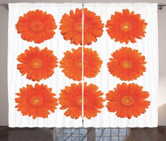 Daisy Bouquet Botanical Curtain