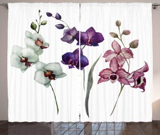 Flourishing Environment Curtain