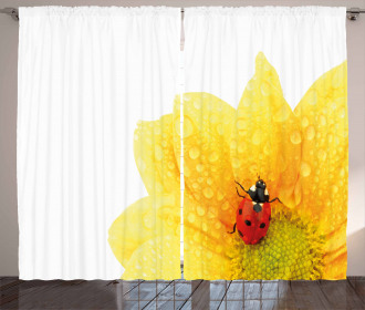 Cute Ladybug Curtain