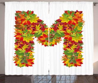 Fall Elements Capital Curtain