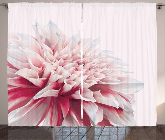 Close Up Floral Blossom Curtain
