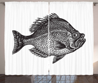 Rock Bass Black and White Curtain
