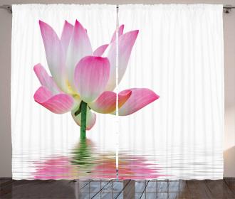 Lotus in Water Curtain
