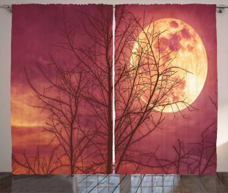 Moon Sky Dead Tree Curtain