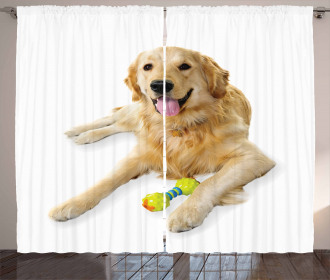 Pet Dog Toy Curtain
