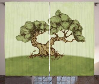 Spring Season Hills Olive Curtain