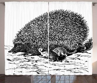 European Hedgehog Curtain