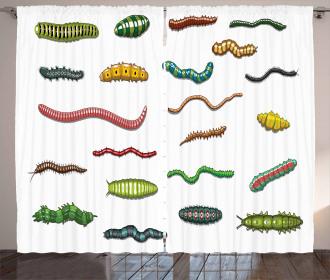 Cartoon Caterpillar Curtain