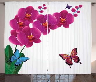 Pink Bouquet Butterflies Curtain