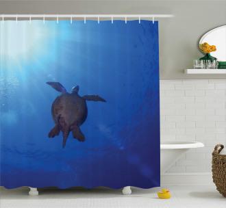 Sea Turtle in Deep Sea Shower Curtain