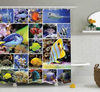 Collage of Underwater Shower Curtain