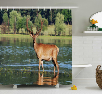 Mountain Animal in Water Shower Curtain