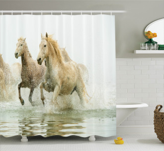 Camargue Horses in Water Shower Curtain