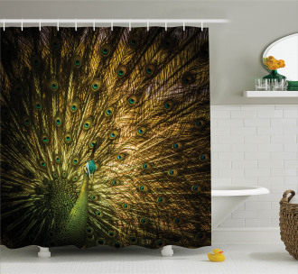 Exotic Dark Feathers Shower Curtain