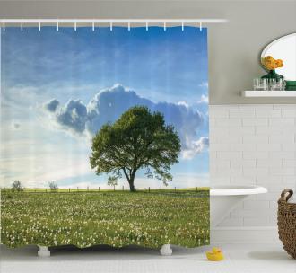 Tree on Field Summer Shower Curtain