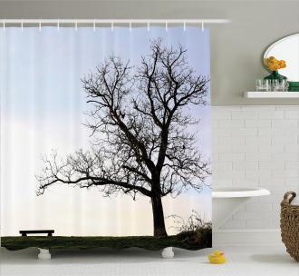 Wooden Bench Evening Shower Curtain