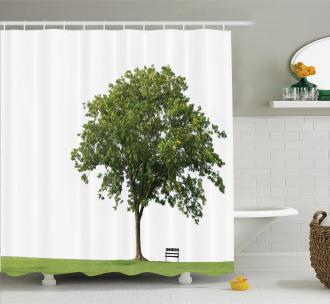 Solitude Bench Nobody Shower Curtain