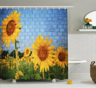 Sunflowers on the Wall Shower Curtain
