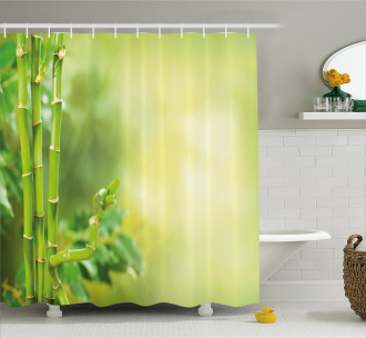 Asian Bamboos Green Trees Shower Curtain