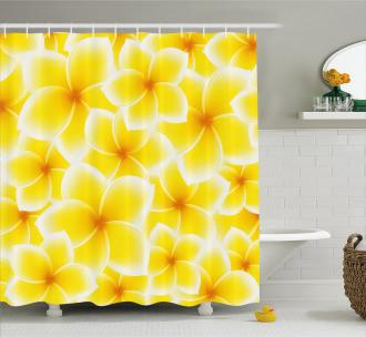 Asian Flower Blossoms Shower Curtain