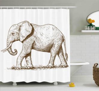 Safari Wild Animals Art Shower Curtain