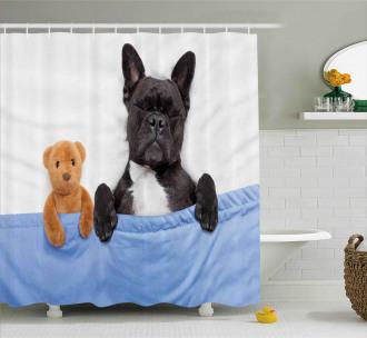 French Bulldog with Bear Shower Curtain