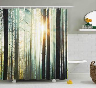 Fairy Foggy Forest Woods Shower Curtain