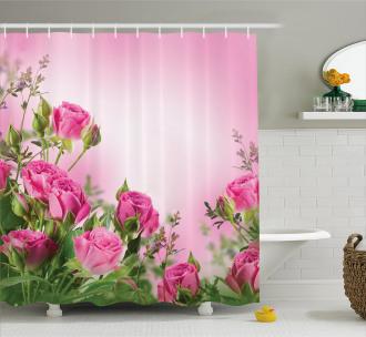 Spring Season Roses Buds Shower Curtain