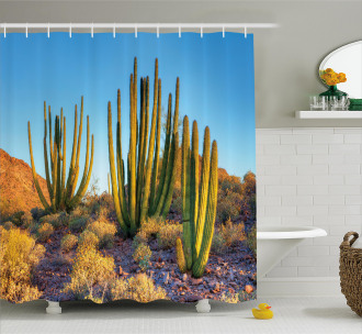 Mountain Cactus Photo Shower Curtain