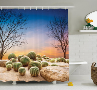 Cactus Balls on Mountain Shower Curtain