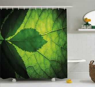 Brazilian Tree Leaf Eco Shower Curtain