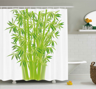 Bamboo Stems with Leaves Shower Curtain