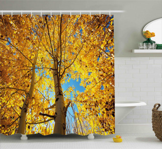 Autumn Trees Leaf Forest Shower Curtain