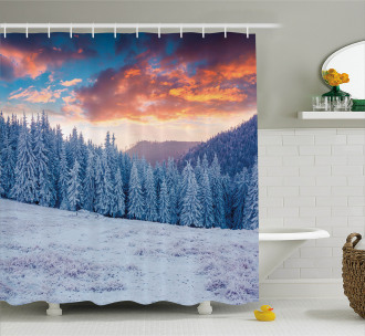 Winter Snowy Forest Sky Shower Curtain