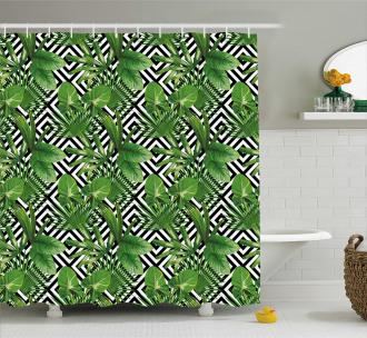 Modern Coconut Palm Shower Curtain