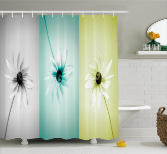 Different Daisy Flower Shower Curtain